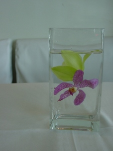 Cocktail tables received sweet and simple centerpieces of submerged orchids in square vases