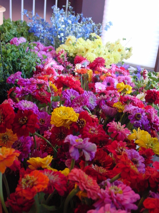 This vibrant bed of flowers awaits to become centerpieces
