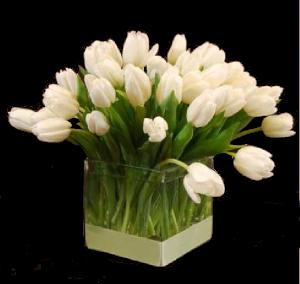 Valentine tulips hoboken jersey city