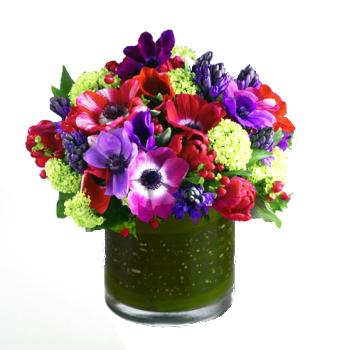 anemones valentine's day hoboken florist