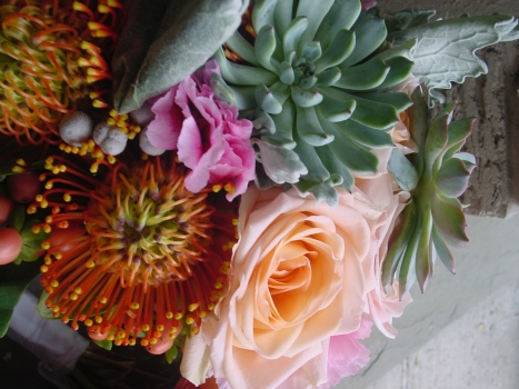 Succulents roses and pincushions